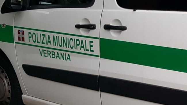 logo pl vb